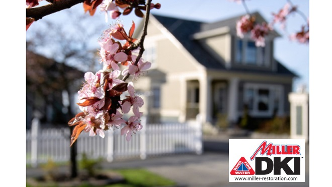 Top 10 Spring Home Maintenance Tips